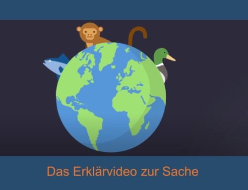 Das animierte Erklärvideo